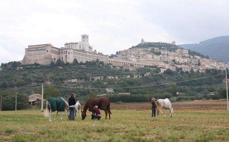 Assisi Endurance Lifestyle Preparazione