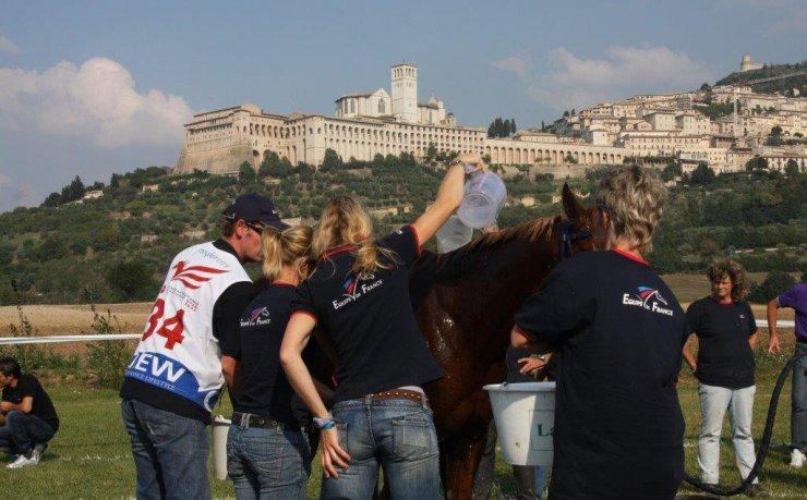 Assisi Endurance Lifestyle Recupero
